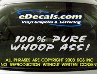 BMP109 Whoop Ass Bumper Sticker Decal