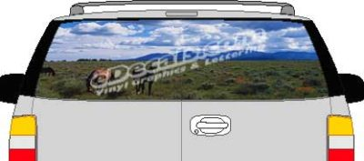 CLR108 Horses Vision Rear Window Mural Decal