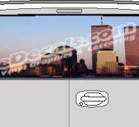 CLR134 WTC Vision Rear Window Mural Decal