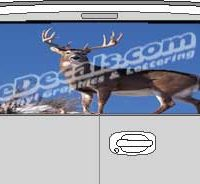 CLR138 Deer I Vision Rear Window Mural Decal
