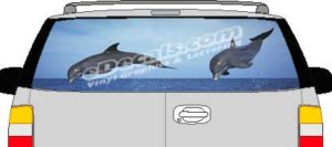 CLR139 Dolphins Vision Rear Window Mural Decal