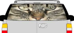 CLR162 Cats Eyes Vision Rear Window Mural Decal
