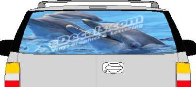 CLR164 Dolphins Vision Rear Window Mural Decal