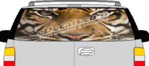 CLR166 Tiger Eyes Vision Rear Window Mural Decal