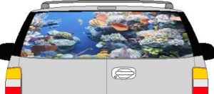 CLR199 Coral Reef Vision Rear Window Mural Decal