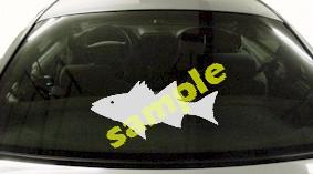 FSH157 Striper Fish Decal