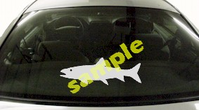 FSH164 Trout Fish Decal