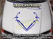 HDA134 Hood Accent Graphic Decal