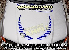 HDA163 Hood Accent Graphic Decal