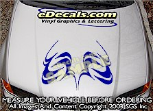 HDA219 Hood Accent Graphic Decal