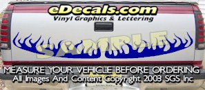 HDA523 Tribal Tailgate Accent Graphic Decal