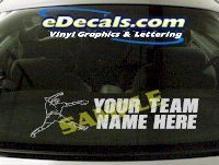 SPT205 Softball Your Team Name Here Sports Cartoon Decal
